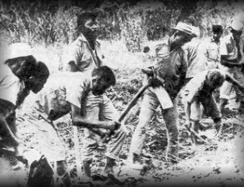 Report: Indonesian state 'responsible for genocide' in 1965